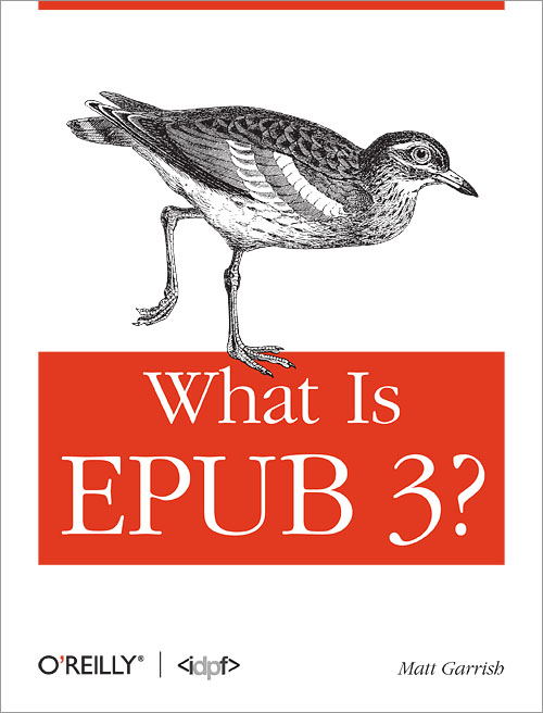 Download accessible epub 3