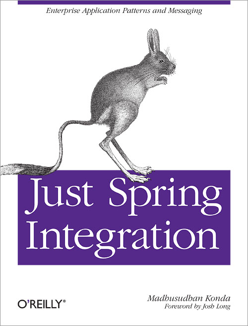 Customer reviews Just Spring Integration A